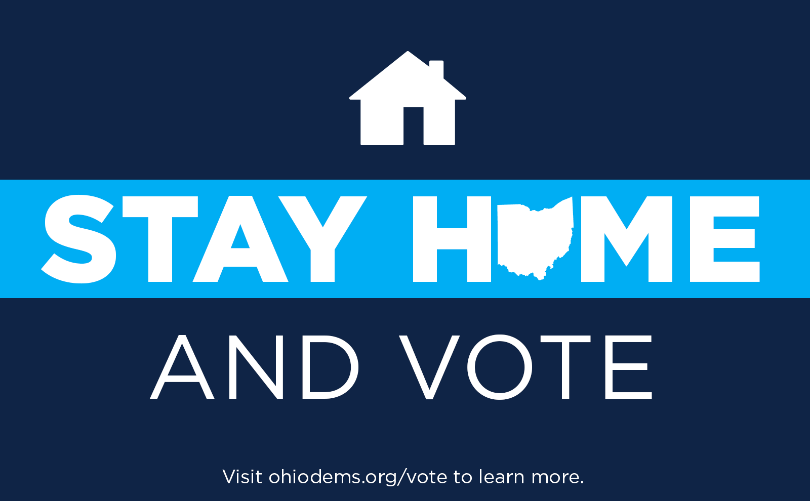 Stay Home and Vote
